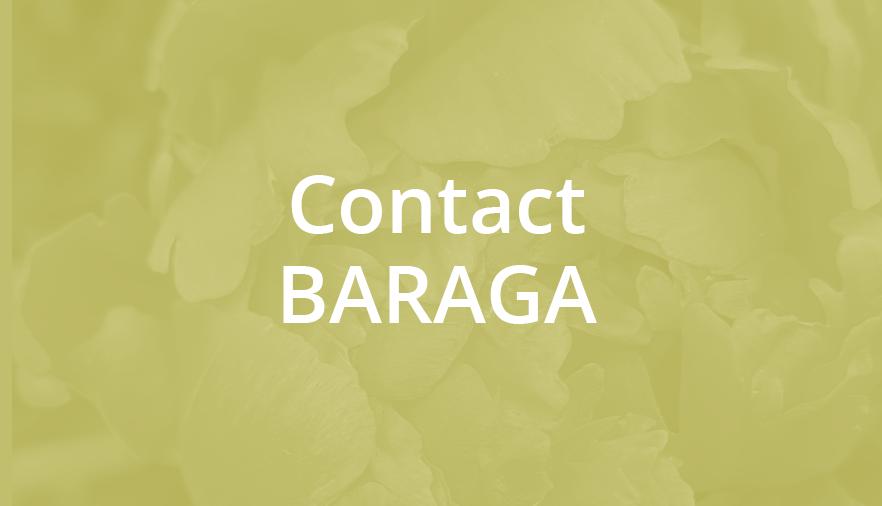 Contact BARAGA